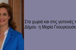Γκουγκουσκίδου: Ξεκινάει αύριο Τετάρτη συναντήσεις με τους δημότες – Το πρόγραμμα σε Ορεστιάδα, χωριά