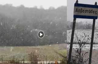 ΒΙΝΤΕΟ: Ψιλοχιονίζει στα χωριά της περιοχής Διδυμοτείχου