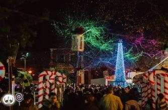 Δήμος Αλεξανδρούπολης: Χριστουγενιάτικα… λαμπάκια 60.000 ευρώ, με έκπτωση μόλις 2,1% απ' την μειοδότρια εταιρεία