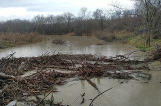 Πεντάλοφος: Πλημμύρισε η περιοχή, αφού έκοψαν τα δέντρα και δεν άκουσαν τους ντόπιους (ΒΙΝΤΕΟ+φωτό)
