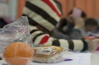 Σε τέσσερα σχολεία του Έβρου φέτος το πρόγραμμα «Διατροφή»
