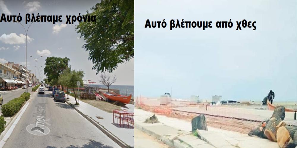 Αλεξανδρούπολη: Συνεχίζονται οι έντονες αντιδράσεις του κόσμου για την κοπή των δέντρων στην παραλιακή