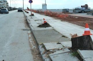 Αλεξανδρούπολη: Περιμένουν τοποθετήσεις από Δασαρχείο, Οικολογική Εταιρεία Έβρου για τα κομμένα δέντρα οι πολίτες