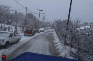 """Η Σαμοθράκη είδε… άσπρη μέρα και χιόνι απ' την κακοκαιρία """"Χιόνη"""" (ΒΙΝΤΕΟ)"""