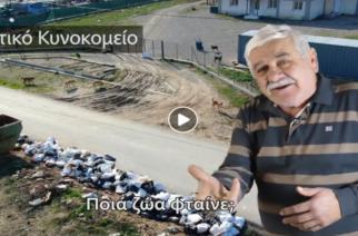 ΒΙΝΤΕΟ: Η έξυπνη απάντηση του παραιτηθέντα Προέδρου Συκορράχης Σ. Γιαμουρίδη στη μήνυση Β.Λαμπάκη για τ' αδέσποτα