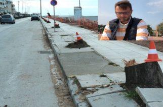 Αποκαλυπτικό: Τρεις ημέρες μετά την έναρξη των έργων αποφάσισαν το κόψιμο των δέντρων!!!