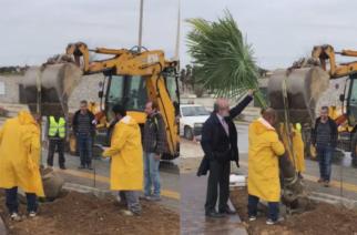 Φοβερό ΒΙΝΤΕΟ: Ο δήμαρχος Βαγγέλης Λαμπάκης με κοστούμι, γραβάτα και σκαρπίνι… φυτεύει φοίνικες στην παραλιακή!!!