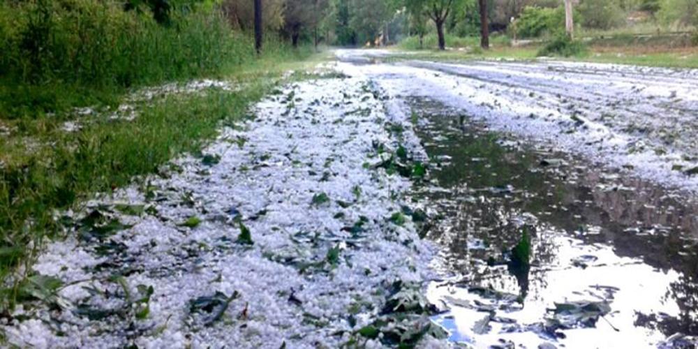 Αλεξανδρούπολη: Έτοιμα τα πορίσματα για τις ζημιές απ' το χαλάζι – Ξεκίνησε η προθεσμία για ενστάσεις