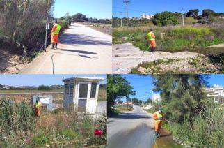 Έβρος: Συνεχίζεται η καταπολέμηση των κουνουπιών – Το πρόγραμμα κίνησης των συνεργείων