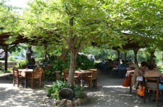 """Η ταβέρνα """"Καρυδιές"""" της Σαμοθράκης στα Βραβεία Ελληνικής Κουζίνας 2019"""
