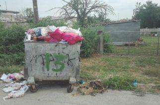 Ορεστιάδα: Αφόρητη η κατάσταση σε περιοχές εκτός κέντρου, αφού επί μέρες δεν γίνεται αποκομιδή των σκουπιδιών