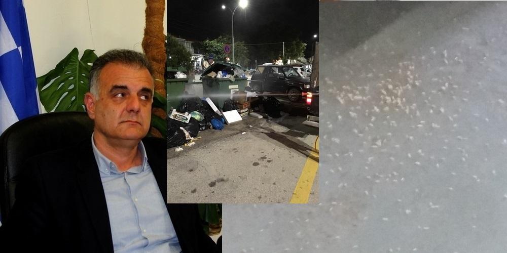 """Σαμοθράκη: Τα """"κολλήματα"""" του απερχόμενου δημάρχου Θανάση Βίτσα καθυστερούν την μεταφορά των σκουπιδιών"""