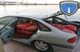 Αλεξανδρούπολη: Δυο συλλήψεις για 1 τόνο ακατάλληλα όστρακα στο λιμανάκι Μαίστρου