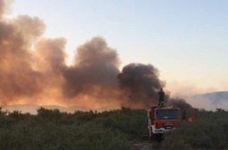 """ΤΩΡΑ: Πυρκαγιά στον Πέπλο απείλησε κτηνοτροφική μονάδα – Κινητοποίηση και """"μάχη"""" της Πυροσβεστικής"""
