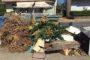 Αλεξανδρούπολη: Κραυγή διαμαρτυρίας κατά του Αντιδημάρχου Καθαριότητας Χ.Ζιώγα για την αδιαφορία αποκομιδής σκουπιδιών (φωτό)