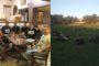 Α.Ε.Διδυμοτείχου: Συνάντηση-συνεργασία της διοίκησης με το νέο δήμαρχο Ρωμύλο Χατζηγιάννογλου – Άρχισε η προετοιμασία