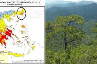 Πολύ υψηλός κίνδυνος πυρκαγιάς σήμερα στον Έβρο – Απαγορεύεται η κυκλοφορία στα δάση