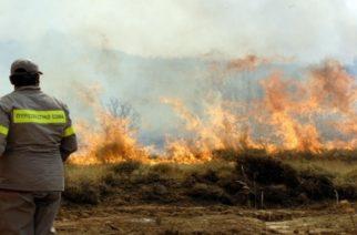 Έβρος: Πυρκαγιά ξέσπασε στο χωριό Τριφύλλι – Μεγάλη κινητοποίηση της Πυροσβεστικής