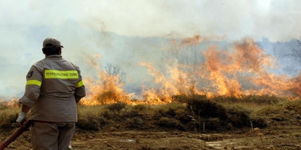 Πυρκαγιά στην Καμαριώτισσα – Μεγάλη κινητοποίηση Πυροσβεστικής και κατοίκων