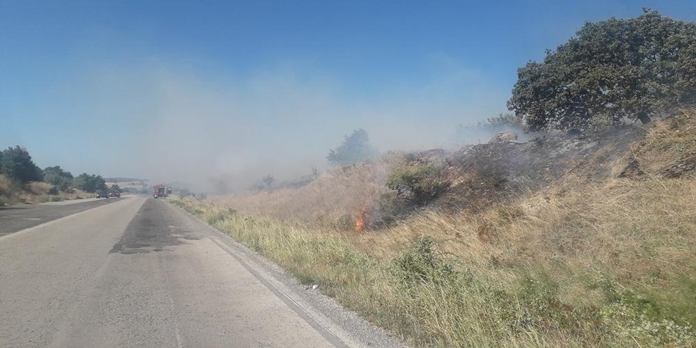Φωτιά τώρα στη Νέα Χιλή – Επιτόπου η Πυροσβεστική – Τρεις πυρκαγιές από το πρωί