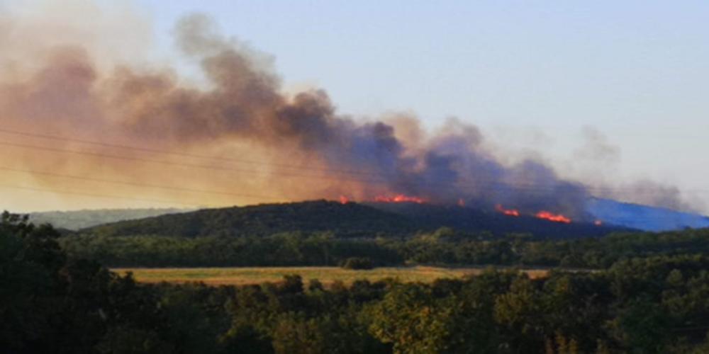 ΤΩΡΑ: Επικίνδυνη πυρκαγιά στην περιοχή Καβησού – Μεγάλη κινητοποίηση της Πυροσβεστικής