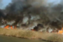 ΕΚΤΑΚΤΟ: Στις φλόγες το Αινίσιο Δέλτα από μεγάλη πυρκαγιά – Συναγερμός στην Πυροσβεστική (ΒΙΝΤΕΟ)