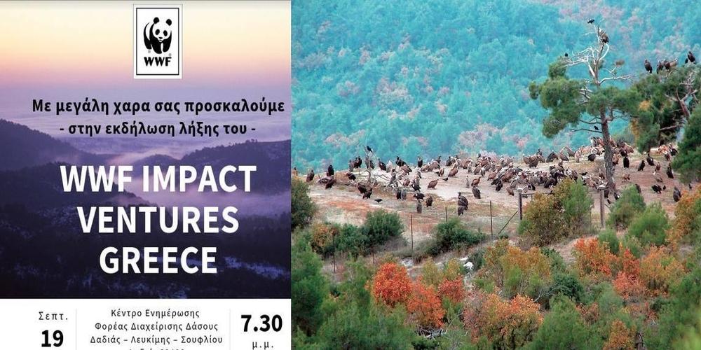 Δύο Σουφλιώτικες επιχειρήσεις στην πρώτη πεντάδα του προγράμματος της WWF για το Εθνικό Πάρκο Δαδιάς