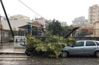 Αλεξανδρούπολη: Το θέμα της ασφάλειας των σχολικών χώρων θέτει η Ένωση Γονέων Μαθητών