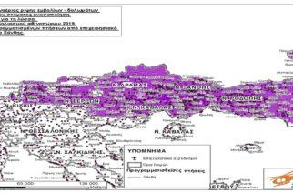 Έβρος: Ξεκινούν τη Δευτέρα οι εμβολιασμοί για την Λύσσα