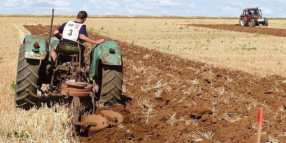 Οι 599 αιτήσεις μικρών γεωργικών εκμεταλλεύσεων που θα μοιραστούν 8,4 εκατ. ευρώ στην Περιφέρεια ΑΜ-Θ
