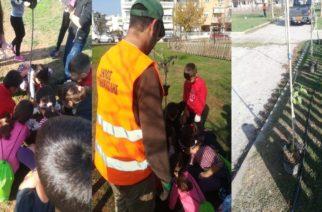 Αλεξανδρούπολη: Δενδροφύτευση στο ΠάρκοΠοιμενίδη από μαθητές και δήμο