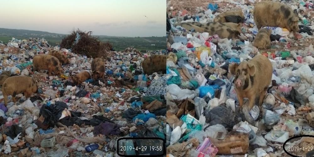 Πρόστιμα 23.000 ευρώ στον δήμο Αλεξανδρούπολης για υποβάθμιση και ενδεχόμενη ρύπανση περιβάλλοντος επί δημαρχίας Λαμπάκη