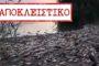 ΠΡΟΣΟΧΗ: Σοβαρός κίνδυνος από νεκρά ψάρια στον ποταμό Έβρο, από τοξικά απόβλητα βουλγαρικών εργοστασίων!!!