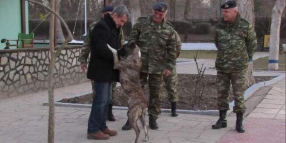 Έβρος: Σκύλος που είχε κακοποιηθεί σε τουρκικό φυλάκιο έγινε ο φύλακας-άγγελος Ελλήνων στρατιωτών