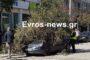 Ορεστιάδα: Τον χάρο με τα μάτια της είδε οδηγός, όταν έπεσε δέντρο στο αυτοκίνητο της (ΒΙΝΤΕΟ)