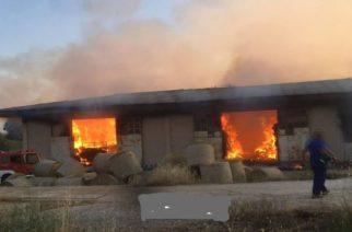 Ορεστιάδα ΤΩΡΑ: Πυρκαγιά μεταξύ Πλάτης και Ελιάς σε κτίριο