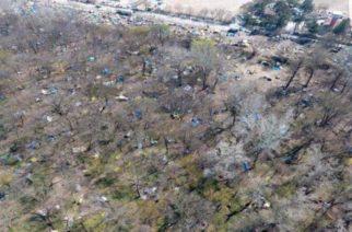 ΒΙΝΤΕΟ: Αποψιλώνεται το δάσος των Καστανεών από τους λαθρομετανάστες -Μεγάλη οικολογική καταστροφή