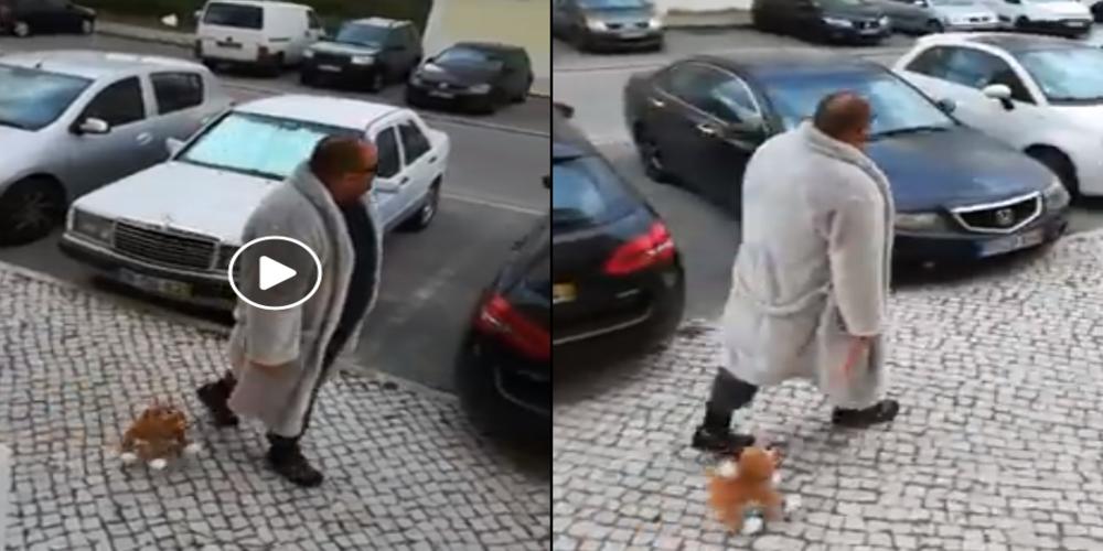 ΒΙΝΤΕΟ: Λέτε να μιμηθούν τον Πορτογάλο και Έλληνες, για να κυκλοφορήσουν με.. σκυλάκι;