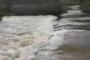 Πτωτική τάση υδάτων σε Ευρθροπόταμο, σταθερή σε Άρδα, αυξητική στον Έβρο στους Κήπους