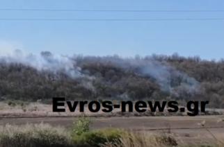 ΤΩΡΑ: Πυρκαγιά ξέσπασε στο δάσος του Ορμενίου Ορεστιάδας
