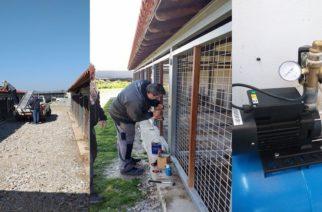 ΦροντίδατουΚαταφυγίουΑδέσποτωνΖώωνΣυντροφιάςστο Δήμο Αλεξανδρούπολης