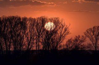 """Επιστροφή στον Έβρο: Οδοιπορικό στα παραμεθόρια χωριά από την """"Καθημερινή"""""""