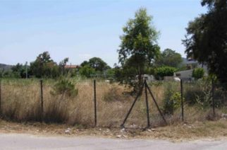 Δήμος Αλεξανδρούπολης: Υποχρέωση καθαρισμού οικοπέδων και ακάλυπτων χώρων