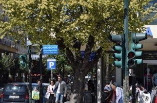 Εμπορικός Σύλλογος Αλεξανδρούπολης: Το ωράριο που προτείνει για τα καταστήματα που ξανάνοιξαν και η αργία