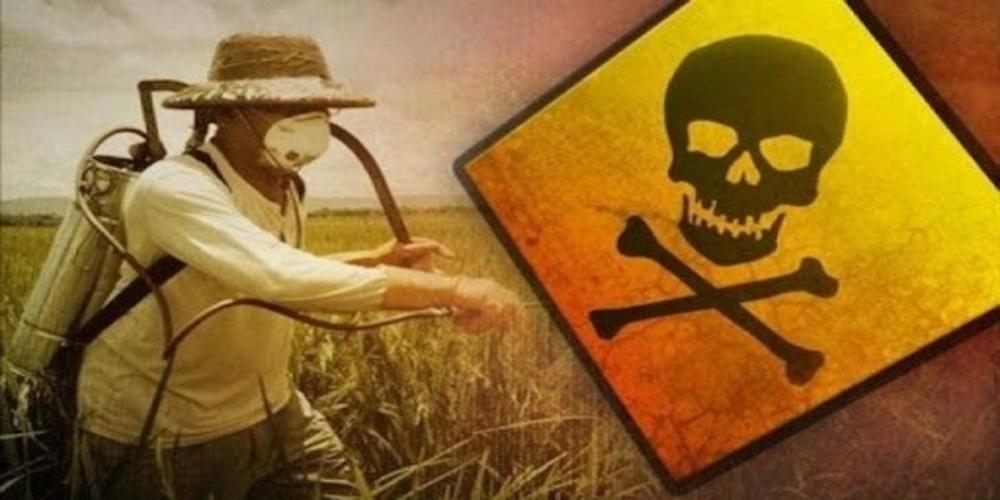 Επικίνδυνο, μη εγκεκριμένο φυτοφάρμακο κυκλοφορεί στον Έβρο