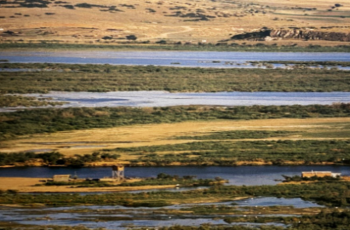 Ο κορωνοϊός διευρύνει την Τουρκική απειλή – Η περίπτωση του Έβρου