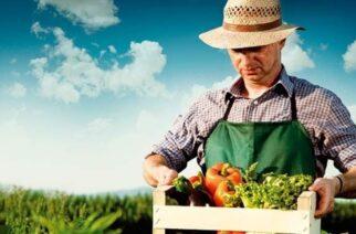 Οι επενδύσεις του κλάδου Αγροδιατροφής που εγκρίθηκαν για χρηματοδότηση απ' το ΕΣΠΑ της Περιφέρειας ΑΜ-Θ