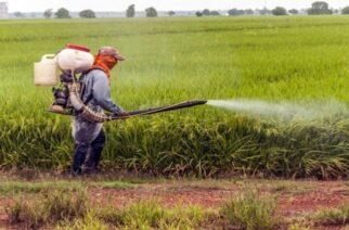 Έβρος: Σε ποιες περιοχές θα μας… ψεκάσουν αυτή την εβδομάδα για καταπολέμηση των κουνουπιών