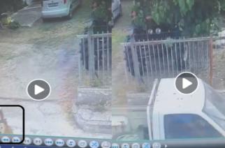 Σουφλί-Σοκαριστικό ΒΙΝΤΕΟ: Ασυνείδητος οδηγός χτυπάει σκύλο και τον εγκαταλείπει βαριά τραυματισμένο