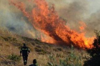 Συναγερμός από πυρκαγιά στην Πυροσβεστική στα όρια Έβρου-Ροδόπης, σε δάσος στις Σάπες